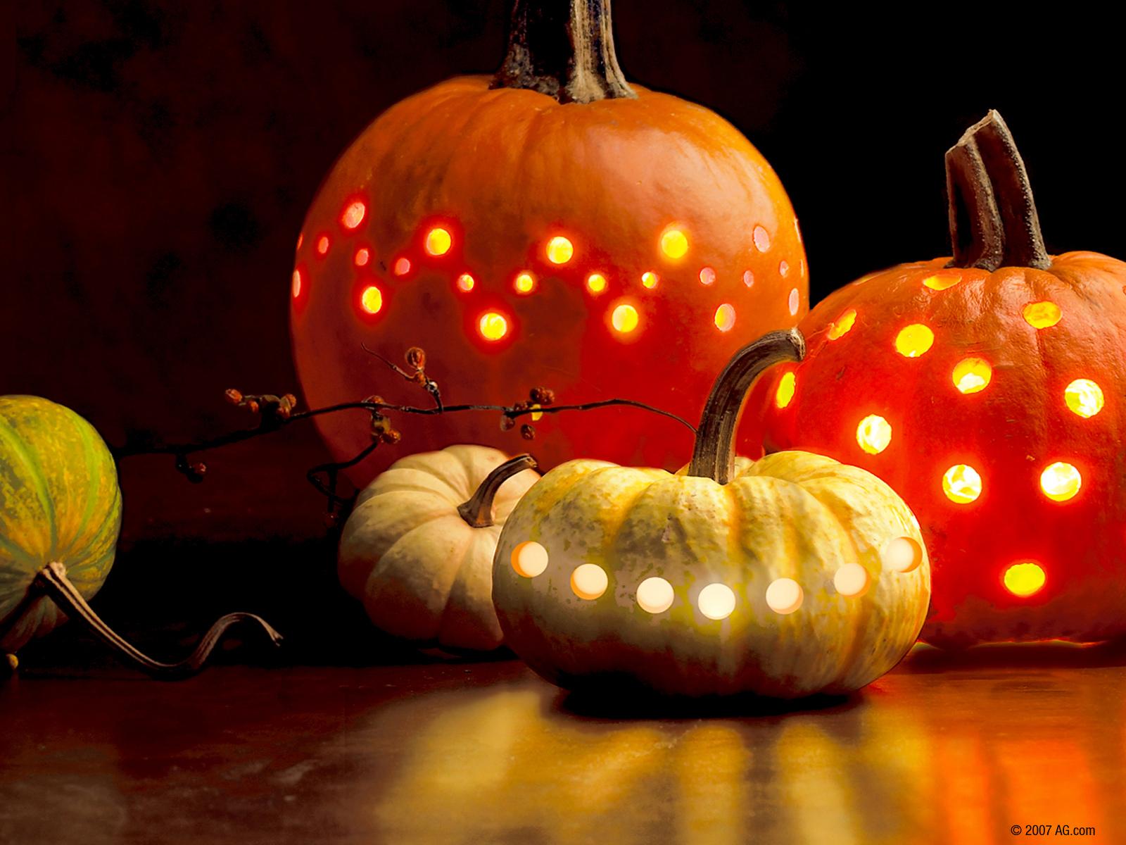 American greetings halloween screensavers the halloween owl american greetings halloween screensavers m4hsunfo